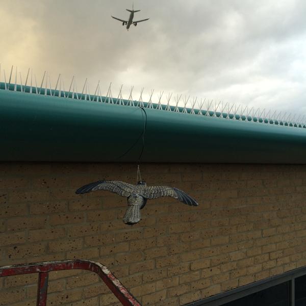 Bird proofing an industrial unit