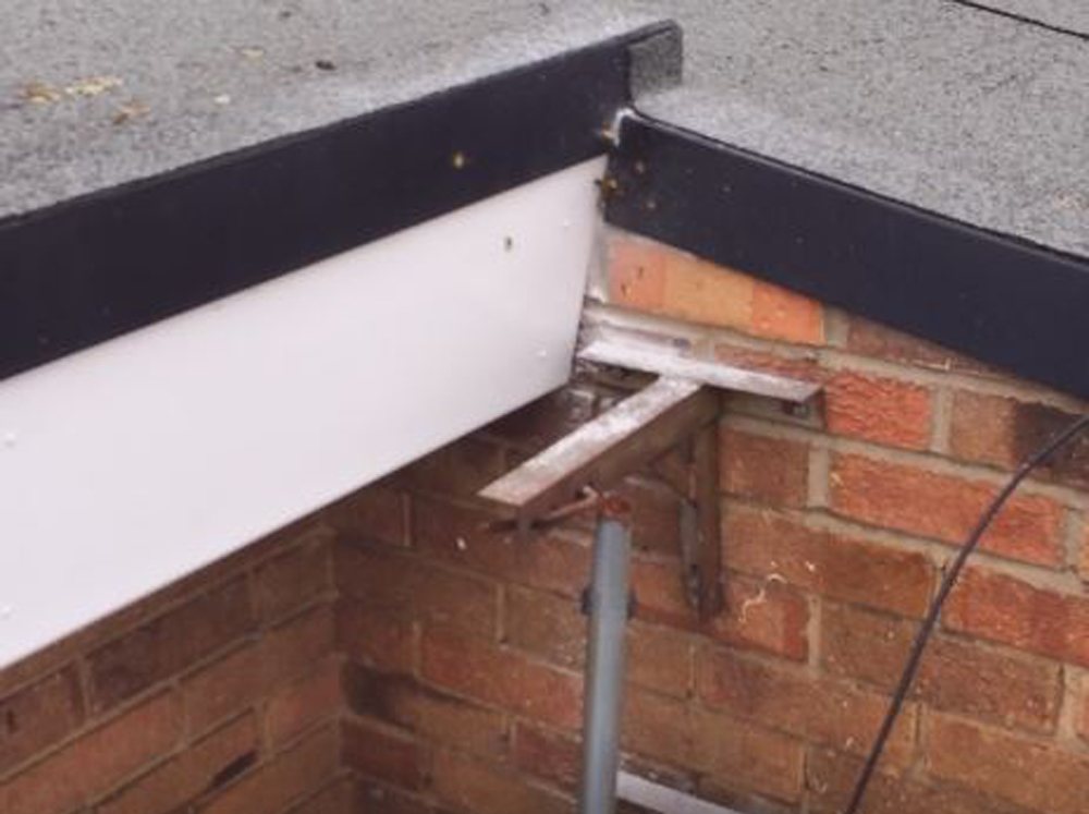 Wasp nest in a commercial building eaves